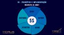 5S - Princípios e Implementação   Mentoria Individual